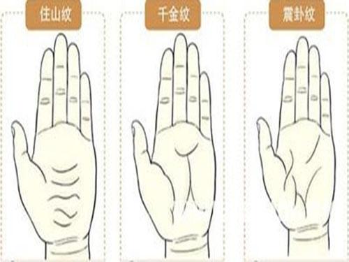 最全罕见的手相掌纹图解